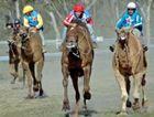 Tara Festival of Culture and Camel Races