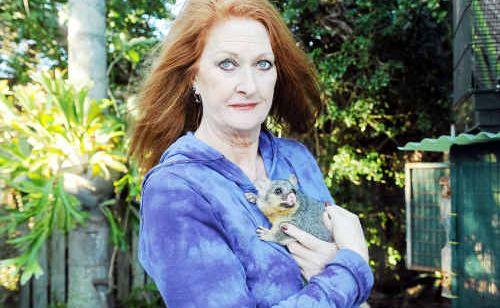 Registered wildlife carer Christine Wynne with a baby possum.