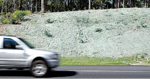 Hydromulching is being used to minimise the amount of dust at works on Steve Irwin Way.