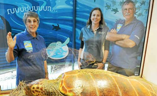 Mon Repos Visitor Centre volunteers Glenda and Bruce Gill with ranger-in-charge Cathy Gatley. More volunteers are needed for the turtle hatching and laying season.