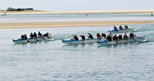 Outrigger teams compete in the fifth annual Wishlist Row for Cancer yesterday on the Maroochy River, aiming to help raise $20,000.