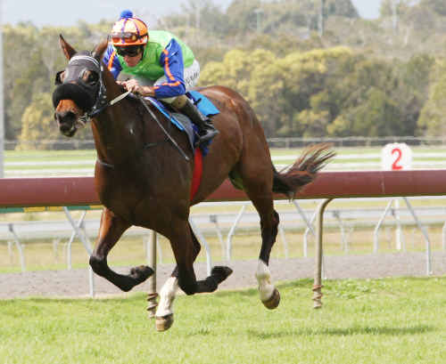 Escudilla, ridden by Michael Cahill, scored a comfortable win in the Maiden Plate at Corbould Park yesterday.
