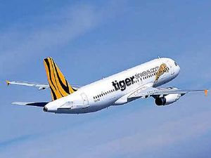 Tiger adds more cheap flights