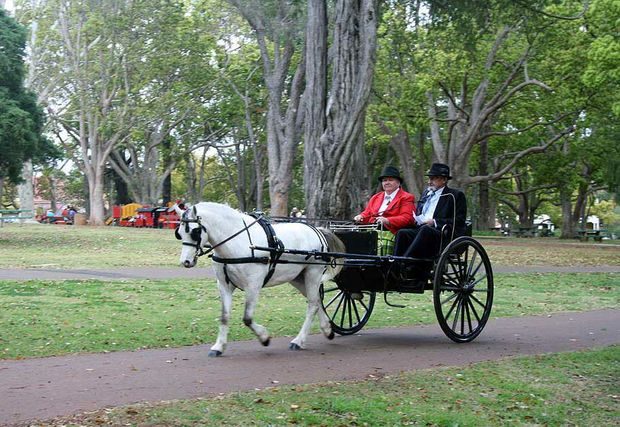 Horse and carriage rides in Queens Park marked the reopening of Toowoomba's iconic Cobb & Co Museum.