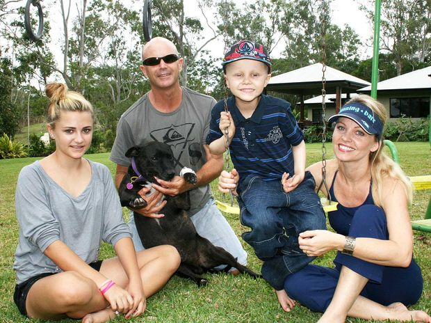 Cancer sufferer Logan Wells returned home from Brisbane last Thursday to spend the weekend at home with his family. He is seen here on his favourite swing-set with sister Sarah, father Grant, dog Diesel and mother Lisa.