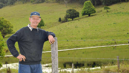 Henry Kross looks over his 700 acres of beautiful green paddocks at Wolvi and is happy there will be feed for his cattle. His dam is also almost full due to this month's high and unseasonable rainfall.