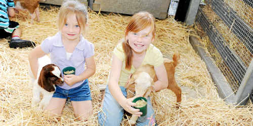 Charlize and Alarnah Ardente enjoy feeding the kid goats at Old Macdonald's Farm.