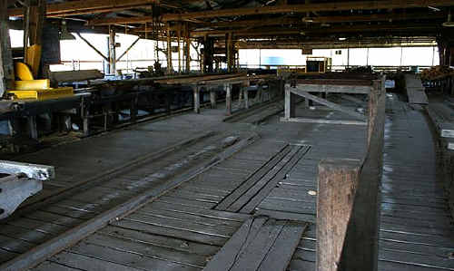 Inside the Elgin Vale sawmill, west of Gympie. Its listing was announced yesterday by Queensland Heritage Council chairman David Eades.