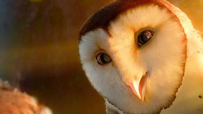 Legend of the Guardians: The Owls of Ga'Hoole is in cinemas now.