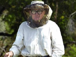 Beekeepers hoping for fine weather