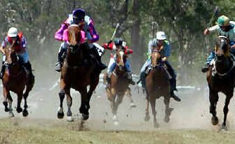 The action on the track at Torbanlea Picnic Races next Saturday will include more than just horses.