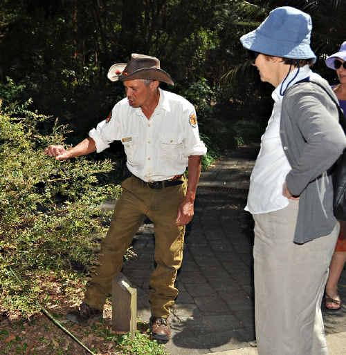 Gumbayngirr elder and NPWS ranger Mark Flanders will lead bush tucker tours at the Botanica Spring Festival on Sunday in the Botanic Garden.
