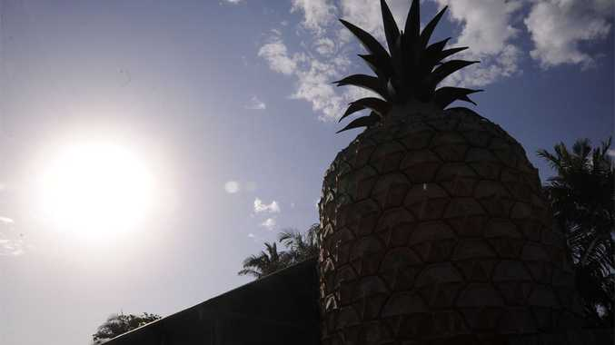 The Big Pineapple on the Sunshine Coast.