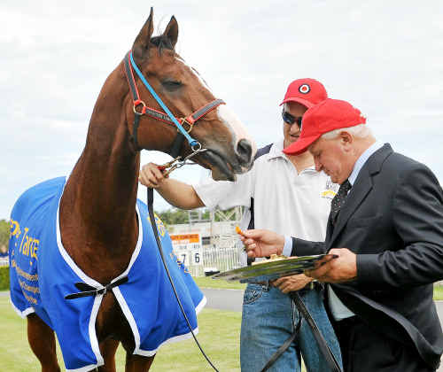 Takeover Target, pictured with owner Joe Janiak, will definitely not be making a comeback.