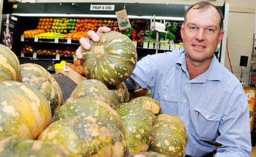 Deputy Mayor Tony Perrett selects a practice pumpkin yesterday.