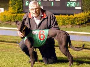 Greyhound's great win