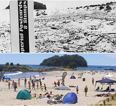An old postcard (top) has revaled skeltons under the Mt Maunganui beach.