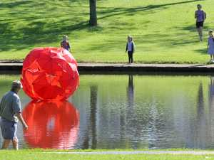 Does anybody know the identity of Toowoomba's guerrilla artist? They constructed this red ball from umbrellas and anchored it in Lake Annand.