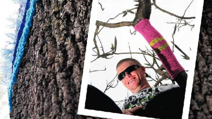 Emerald Beach resident Aaron Marr (inset) couldn't help but smile when he spotted leg warmers on the tulip trees and a massive silky oak in Coffs Harbour.