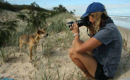 Jennifer Parkhurst was fined $40,000 for feeding Fraser Island dingoes.