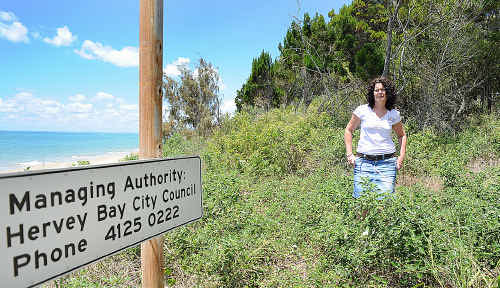 Is Hervey Bay's iconic Esplanade foreshore in need of a clean-up or should it just be left alone?