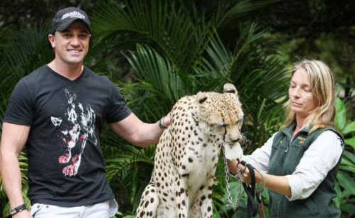 Shannon Noll makes friends with Sheeba, a cheetah at Australia Zoo, before he performs on Steve Irwin Day.