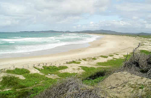 Cowper MP Luke Hartsuyker has questioned a study which proposes a planned retreat from areas of Wooli at risk of being claimed by the ocean through erosion.