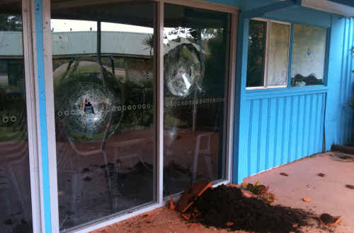 A pot plant was hurled into a front door at the Pet Porpoise Pool.