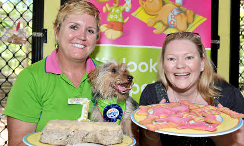 Eddie celebrates his first birthday with a meatloaf and mash cake and the help of his owner Amanda Austin (right) and Pet Resort manager Sam Brown.