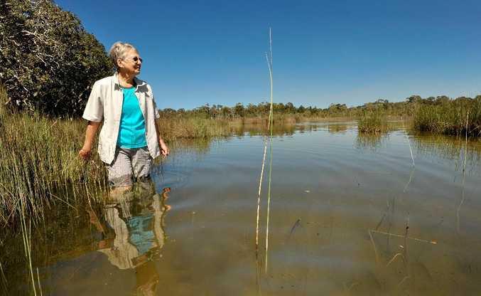 Kay Davison on the edge of Hearnes Lake near the proposed development site.