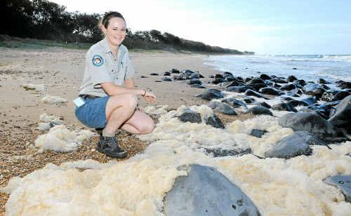 Turtle ranger Gemma Haley enjoys work at Mon Repos Beach which has proven to be a huge tourist drawcard.