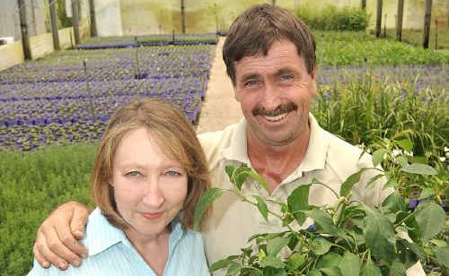 Sharon and Andrew Cooper, from Forest Blooms Nursery at Kureelpa, have written a gardening book called The Superfood Gardener.