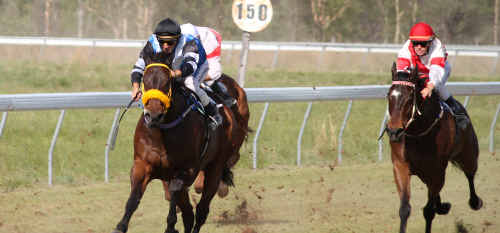 UNDER PRESSURE: The Dingo Cup was a success this year but the club, like many others in Queensland country racing, is under mounting financial strain. file