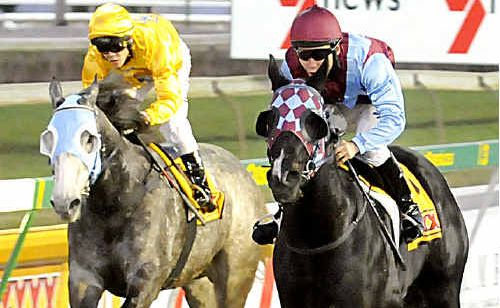 Racing at Clifford Park is on sound financial footing, says club chairman Bob Frappell.