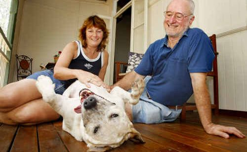Animal foster carer Michelle Williams and her partner Paul Sutton of Coal Falls with their new friend Buddha the cattle dog-cross.