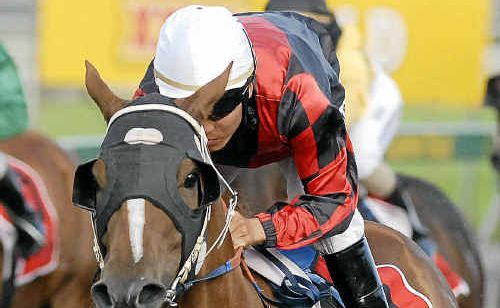 Apprentice Nori Yamada enjoys an easy ride as Mirabeau races to a spacious victory in Saturday's Dalrello Class 5 Handicap (1200m) at Clifford Park.