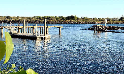 Sad scene: An 80-year-old man died after his kayak rolled in the Jack Evans Boat Harbour.