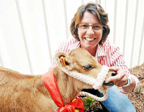 Daily Examiner manager Judy Lewis with her Christmas gift from staff, a jersey calf.