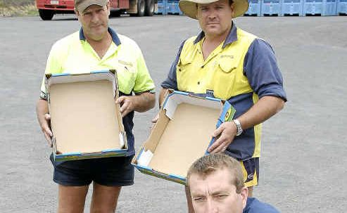 Lindsay Transport drivers (from left) David Wolfe, Ashley Jackwitz and Damien Kent with empty fruit boxes after the floods decimated crops.