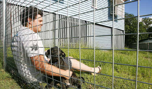 Zac Fitzgerald leans against his newly erected dog fence with his new mastiff-cross puppy.