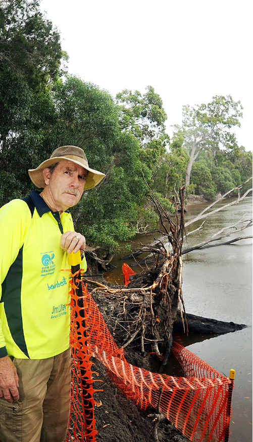 David Allan with a large bloodwood tree that has has fallen into Currimundi Creek.