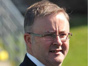 Australia will struggle without high speed rail: Albanese
