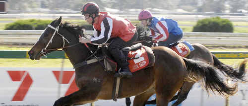 Toowoomba filly Flammable will help complete her Magic Millions preparation for trainer Mark Webb in today's Trackside Photography Class 1 Handicap (1100m) at Clifford Park.