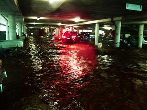 Flood survivor says 'don't believe the lies', build basins