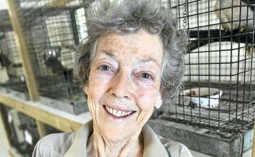 Gill Brownhill of Eumundi Wildlife Rehabilitation Centre with an orphan.