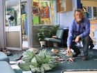 Smashed up: Glazier Michael O'Brien helps clean up the mess at Yamba Public School.