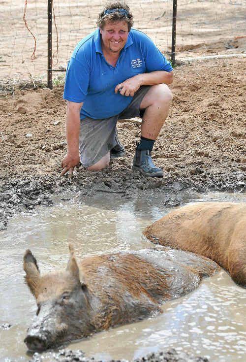 Internationally renowned rare pig breeder Mark Tully with some of his animals that survived the floodwaters.