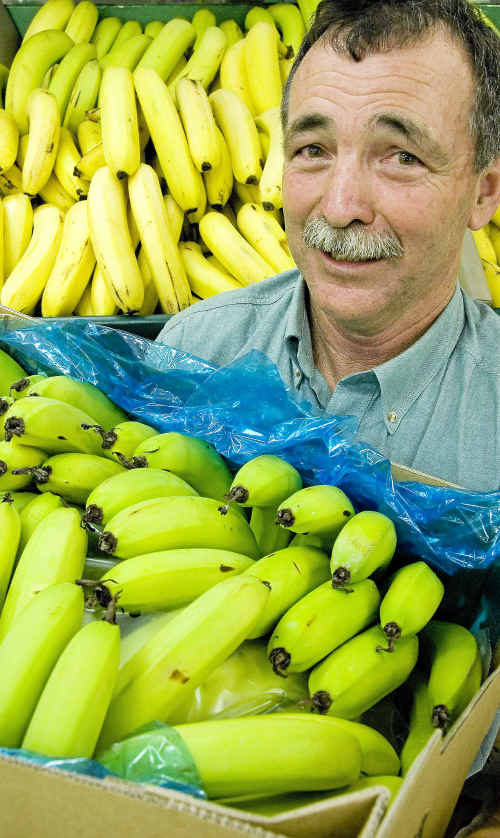 Malcolm Takagaki, of Millers Fruit Barn, said consumers should not pay inflated prices for bananas.