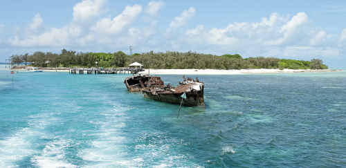 The Heron Island Dive Festival is an official fringe event of the 2011 Underwater Festival.