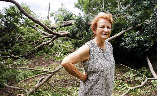 Rockton House owner Angela Geertsma surrounded by large tree branches that came down in the grounds during Monday's storm.
